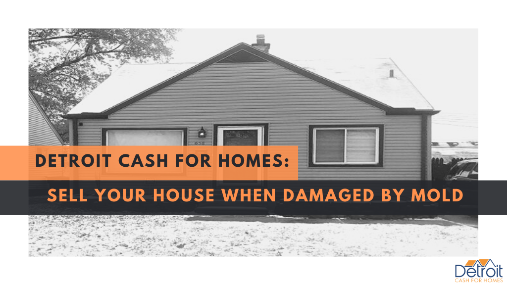 Detroit Cash For Homes: Sell Your House When Damaged by Mold
