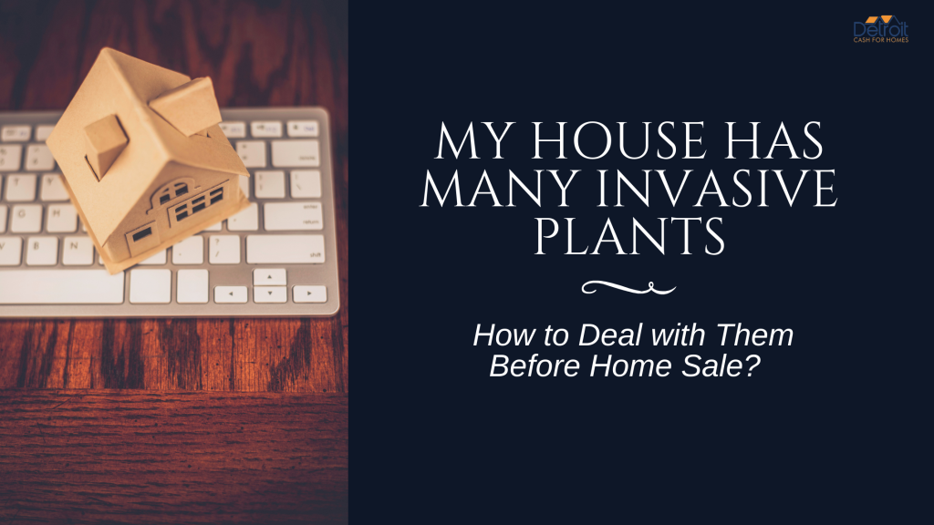 My House has Many Invasive Plants: How to Deal with Them Before Home Sale?